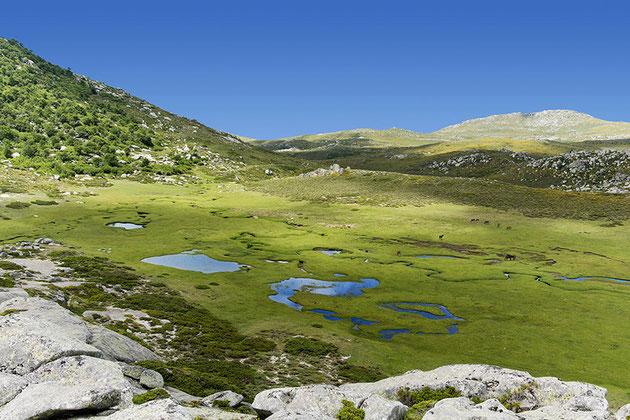 randonnée Pinia, Urbinu, Corse.Hiking Pinia,Urbinu,Corsica.