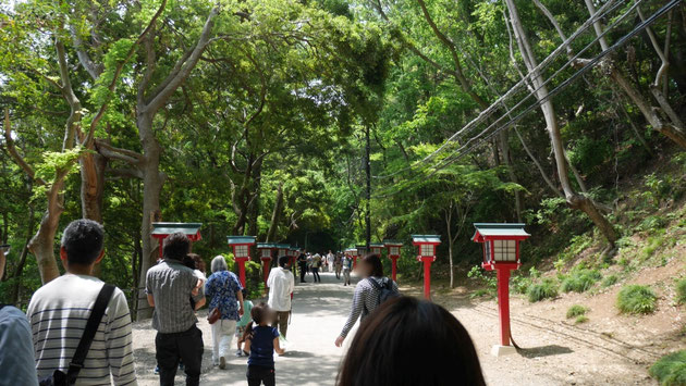 浄信門を抜けたあたり。よく見ると左右で木々の明るさが異なることが分かる。