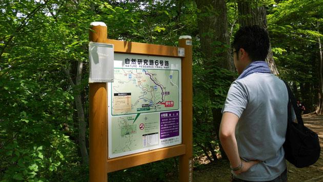 下山ルートを確認する若林。バリエーションルートの豊富さも、高尾山の魅力だ。
