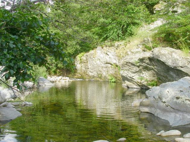 La rivière à l'étiage