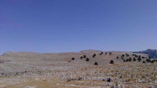 Cumbre del Cambrón en la Sierra de Segura