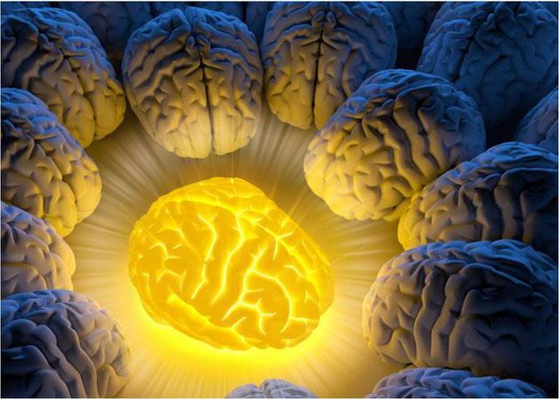 Fotoquelle: http://bewusst-vegan-froh.de/so-heilt-und-staerkt-kurkuma-das-menschliche-gehirn/