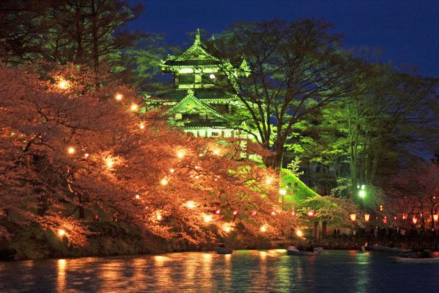 観桜 賑やかな歓声が、桜の風情とともに流れる(高田公園)