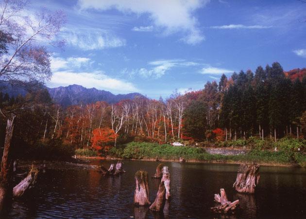 天池(栄村)