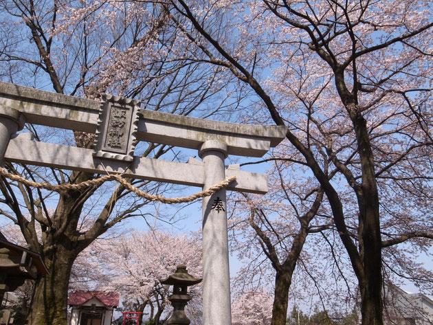 今池神社:諏訪とは農耕の神様?正面に田園がその向こうに中央病院が見える