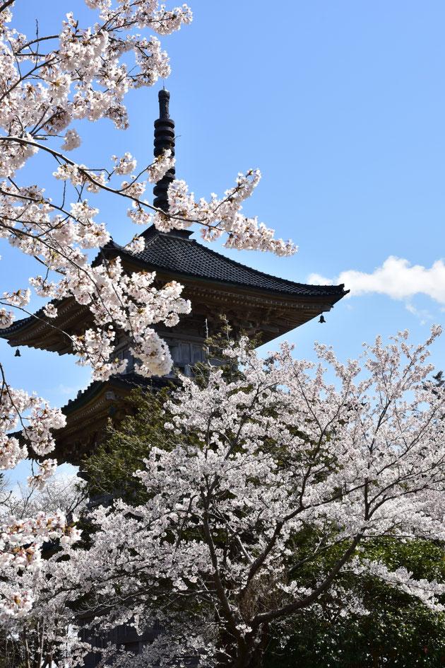 春の一日  宮川幸子