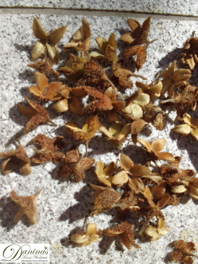 Wunderschöne Herbstdeko aus Naturmaterialien basteln - Schritt für Schritt Anleitung