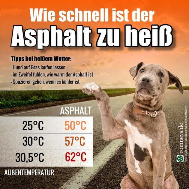 Quelle: http://www.romneys.de/blog/vorsicht-bei-heissem-asphalt.103, Copyright: romneys.de