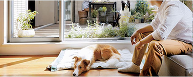 ペット関連高齢化対応リフォーム-バリアフリー-建物劣化防止-延焼防止-保護強化対策