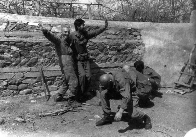 karachinarum 1992