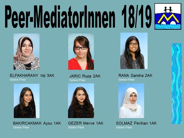 Peers 16-17 in HAS/HAK-AUL Friesgasse