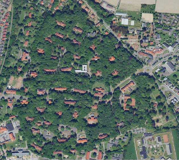 Bedburger Klinikwald TIMolineMRW