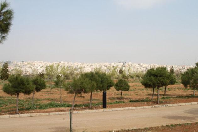 Amman genannt auch die Weiße Stadt.