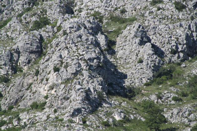 Mit Fantasie kann man einen steinernen Riesen entdecken.