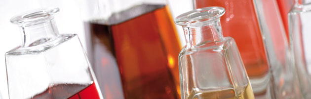 Leere Flaschen in verschiedenen Formen und Größen zum Abfüllen von Bränden oder hausgemachten Säften