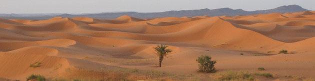 circuit au sud Maroc en 4x4