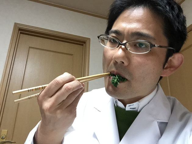 ヨモギの醤油和えを食すガーデンドクター柴ちゃん。さて、肝心のお味は?