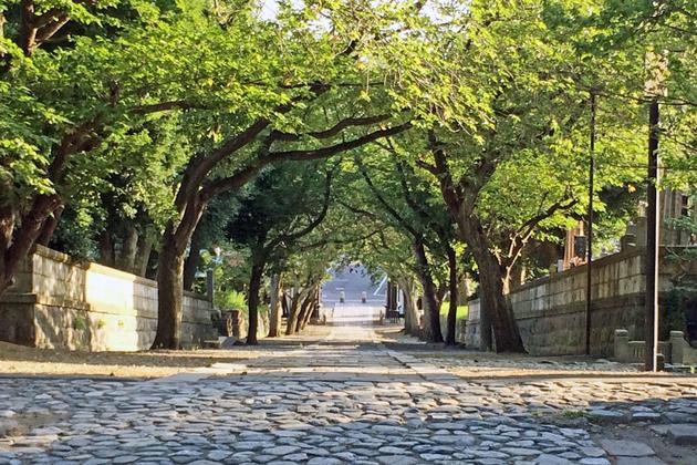 遊行寺、総門への坂道。遊行通りへ続く