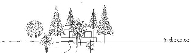 軽井沢の雑木林に囲まれ板張りと大きなウッドデッキアトリエを併設した居心地のよい建物に仕上がりました