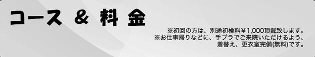 松崎カイロ新橋整体院 コース&料金