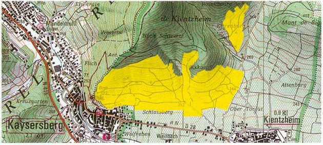 Le Grand Cru Schlossberg est implanté sur les communes de Kaysersberg et de Kientzheim