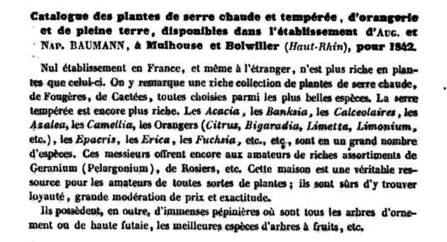 Catalogue des plantes disponibles dans les établissements Baumann, Bulletin de l'horticulteur Universel, 1842, page 318