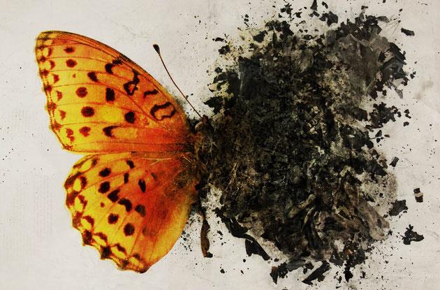 """Immagine tratta dal sito """"Cultura Emotiva"""" www.culturaemotiva.it"""
