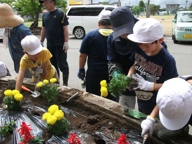 全校花植え活動