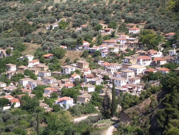 Kerinia umgeben von Olivenhainen in hügeliger Landschaft