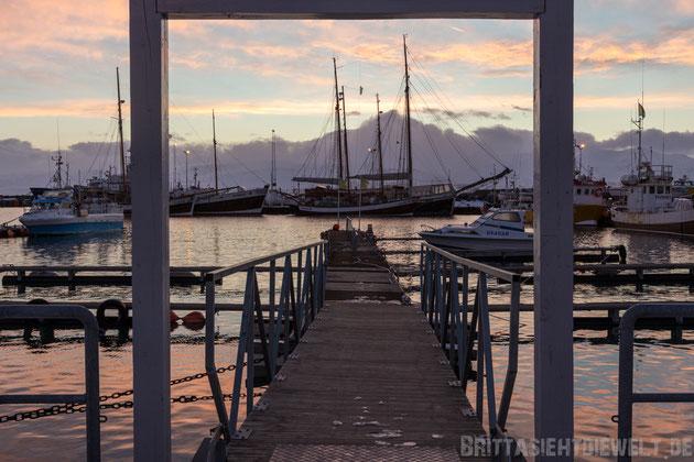 Im Hafen von Húsavík...