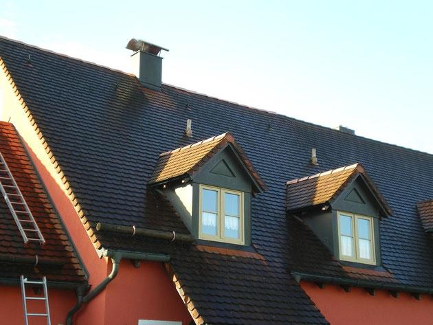 biberschwanz das dach kupfer. Black Bedroom Furniture Sets. Home Design Ideas
