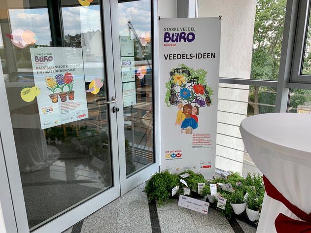 Eingang in das STARKE VEEDEL BÜRO MÜLHEIM. Zur Eröffnung gab es mediterrane Pflanzen aus der Pflanzenschule der Alexianer.