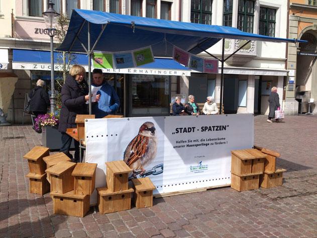 Die Standaktion war ein grosser Erfolg: 47 Spatzenkästen wurden verkauft! (Foto: Kathrin Möller)