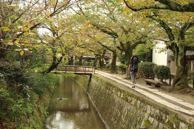 Family Friendly Walks in Kyoto, Japan - The Philosopher's Path