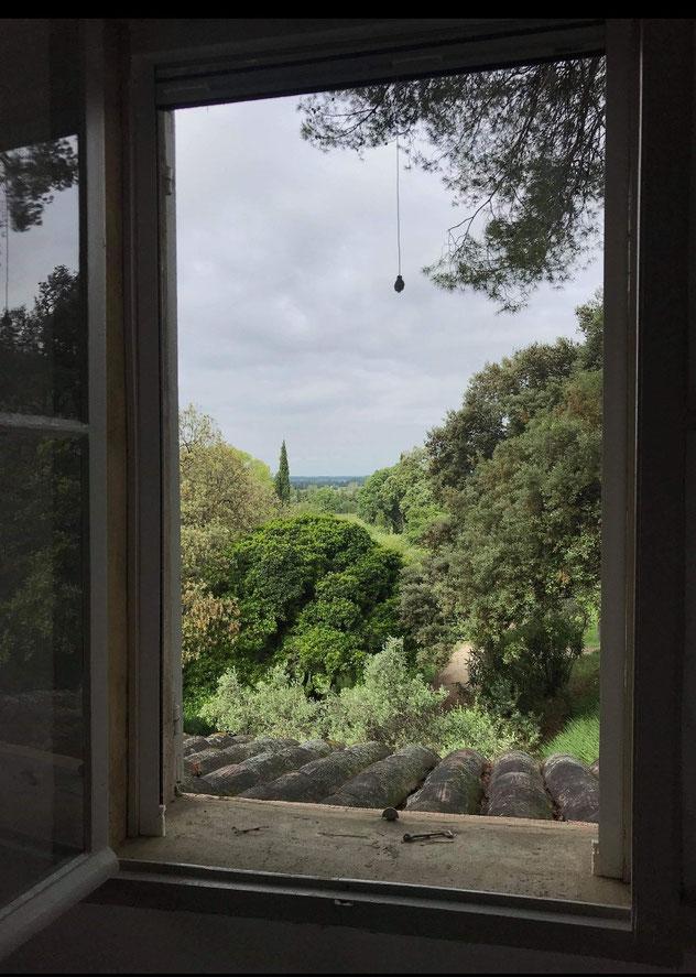 Ausblick durch Fenster auf Garten mit hohen grünen Bäumen und grauen Wolken am Himmel