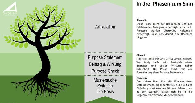 Das 3-Phasen Purpose Modell zum höheren Sinn