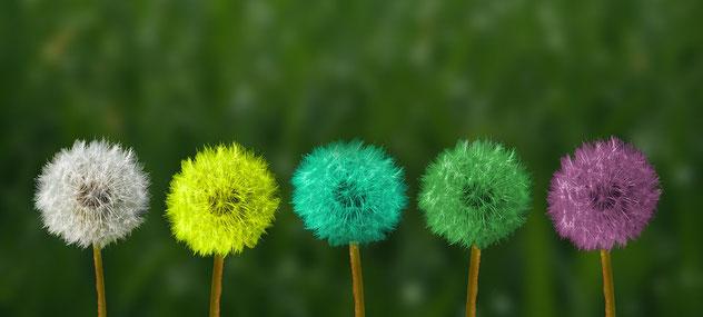 Agiles Denken schafft mehr Optionen und fördert die Kreativität