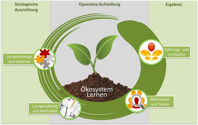 Das Ökosystem des ganzheitlichen Lernens mit den vier KIDT Faktoren