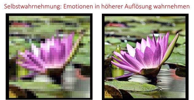 Mit Selbstwahrnehmung eigene Emotionen und Gefühle in höherer Auflösung wahrnehmen