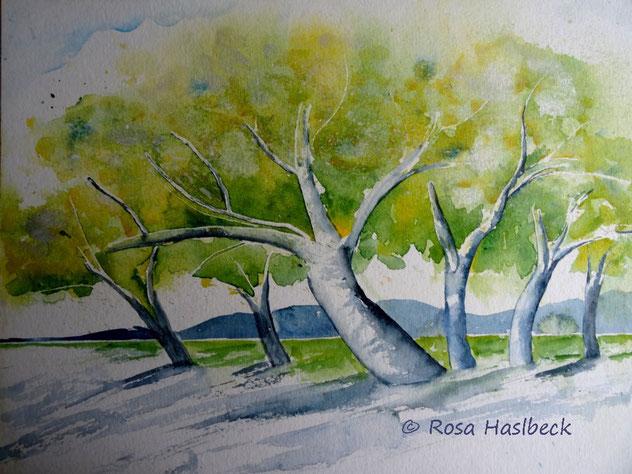 Meine Landschaftsaquarelle Galerie Rosas Webseite