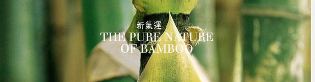 INFO - Bambus Tee