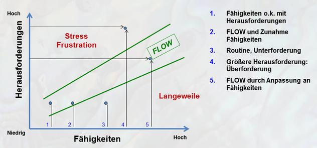Das Flow Erlebnis