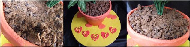 fausse terre realiste en biscuit cookie