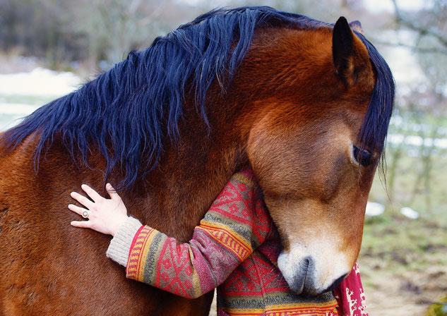 Kraft durch Pferde e.V. Eurasburg