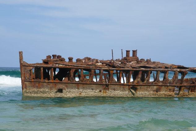 Vergänglichkeit !  Gesehen in Australien, Fraser Islands