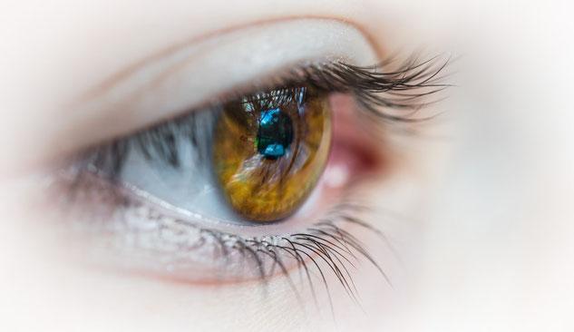 人の「瞳」の写真