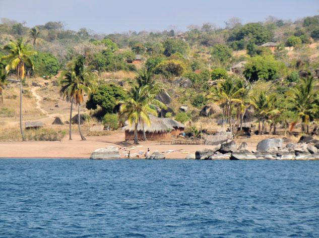 Malawi See, Bilharziose