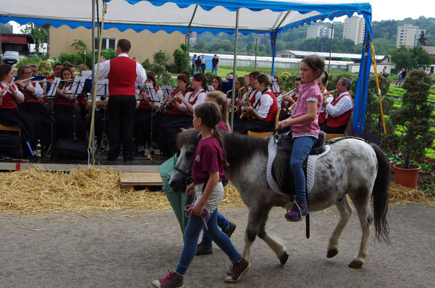 Ponyreiten für die Kleinen