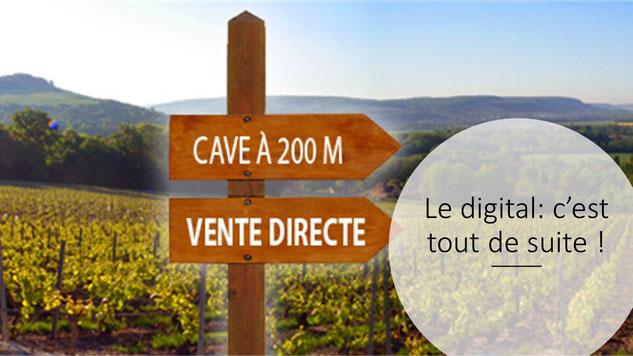 commercialisation du vin