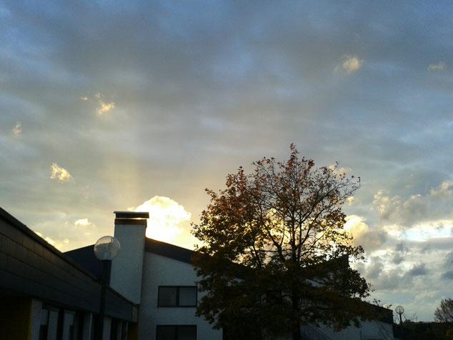 Herbstliche Abendstimmung auf dem Schulberg